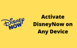 How To Activate Disney Now On Any Device?