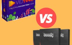 Toonly vs Vidtoon: Which is Better For Toon Videos